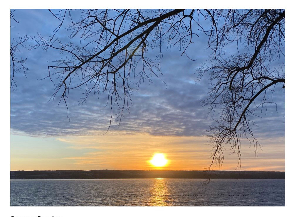 "Color photo of the sun rising over Cayuga Lake. Small waves ripple on the surface of the lake, which makes up the bottom ""layer"" of the photo. Silhouettes of Canadian geese and bufflehead ducks, which appear tiny, can be seen toward the middle of the lake. The eastern shore of the lake rises above the water; it makes up the next layer of the photo. It appears dark in color, as just above the center section of the shore the newly rising sun is very bright--even though it's being slightly muted and distorted by thin clouds. The reflection of the sun shines on the lake beneath it, causing that section of water to glimmer bright orange and yellow. The sun appears in the area of sky which makes up the third layer of the photo. This area of the sky consists mostly of thin, wispy clouds; they look like horizontal brush strokes of white, gray, and different shades of orange across a painting. There is a small area on the left side of the photo, also in the third layer, that is light blue sky. The fourth/top layer of the photo consists of slightly thicker clouds that appear purplish gray. A bright blue sky can be seen between these clouds. Silhouettes of tree branches appear from the upper right corner of the photo. They look like they've been layered over mostly the clouds in the fourth/top layer of the photo."