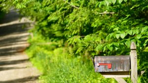 Time Worn I: A wide-angle shot of a mailbox on a country road in Vermont. The mailbox, purplish-blue and partly patina covered, sits on the far right of the shot. Behind the mailbox and to the left are green trees and grass, slightly out of focus. A dirt road winds down the left-hand side of the shot, shadows falling across some of the gravel.
