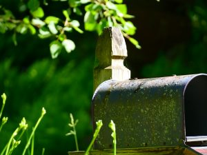 Time Worn III: The same purplish-blue mailbox faces to the side of the shot, with its door fully open, the dark interior partly visible. The left-hand top and side of the mailbox are visible with full sunlight illuminating the patina covered top, wooden upper post, hanging tree above, and flower buds below. The green trees and grass are blurred with deep pockets of shadow.